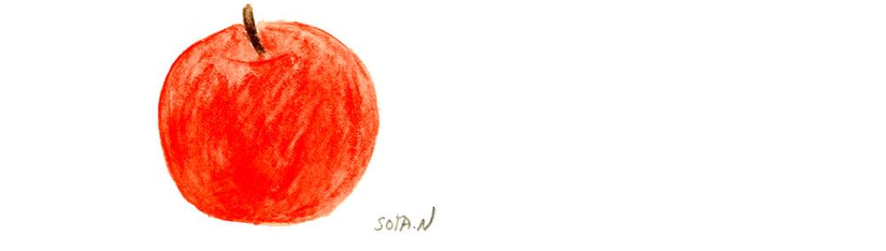 STUDIO-SOYA