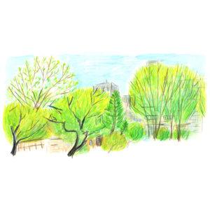 靖国神社の緑の隊長 装画原画
